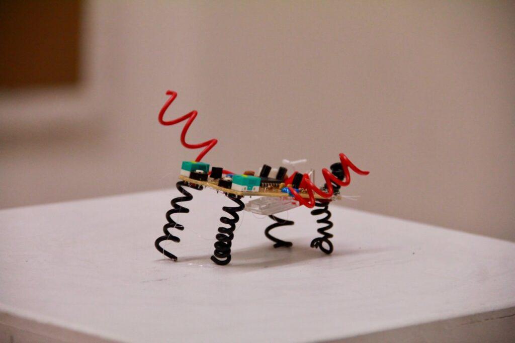 Die Computermaus ist jetzt ein Insektoboter - das Bild zeigt einen Insektoboter - das Upcyclingprojekt in der Vorschule